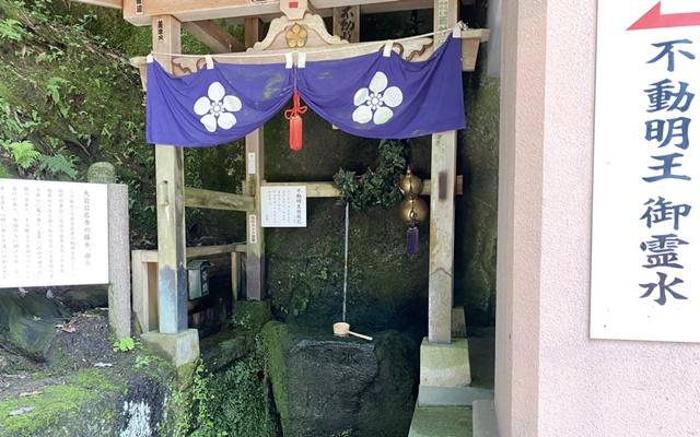 大岩日石寺の不動堂の藤水
